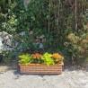 jardiniere en terre cuite